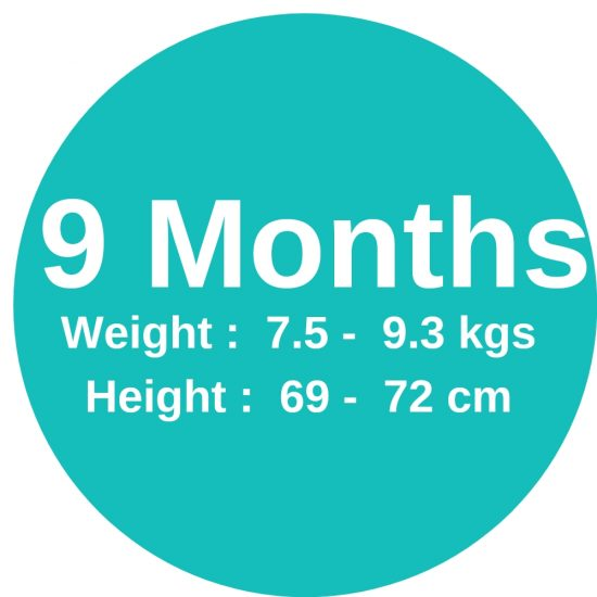 9m (7.5-9.3 kgs)