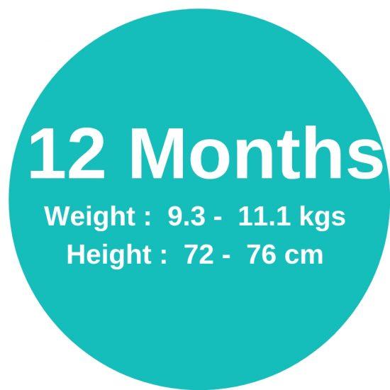 12m (9. 3-11.1kgs)