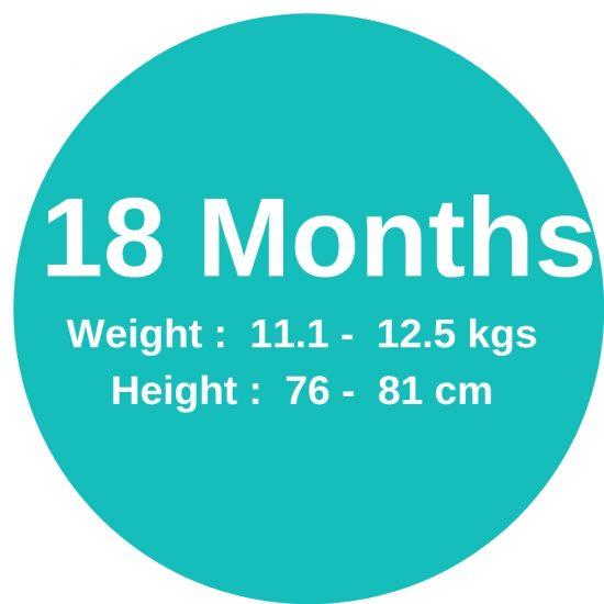 18m (11.1-12 4kgs)