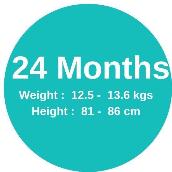 24m(12.4-13.6kgs)